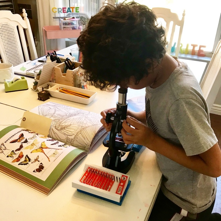 Microscope Observations