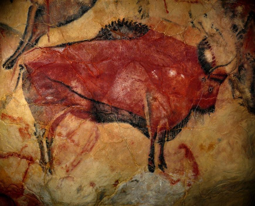 bison-1171794_1280